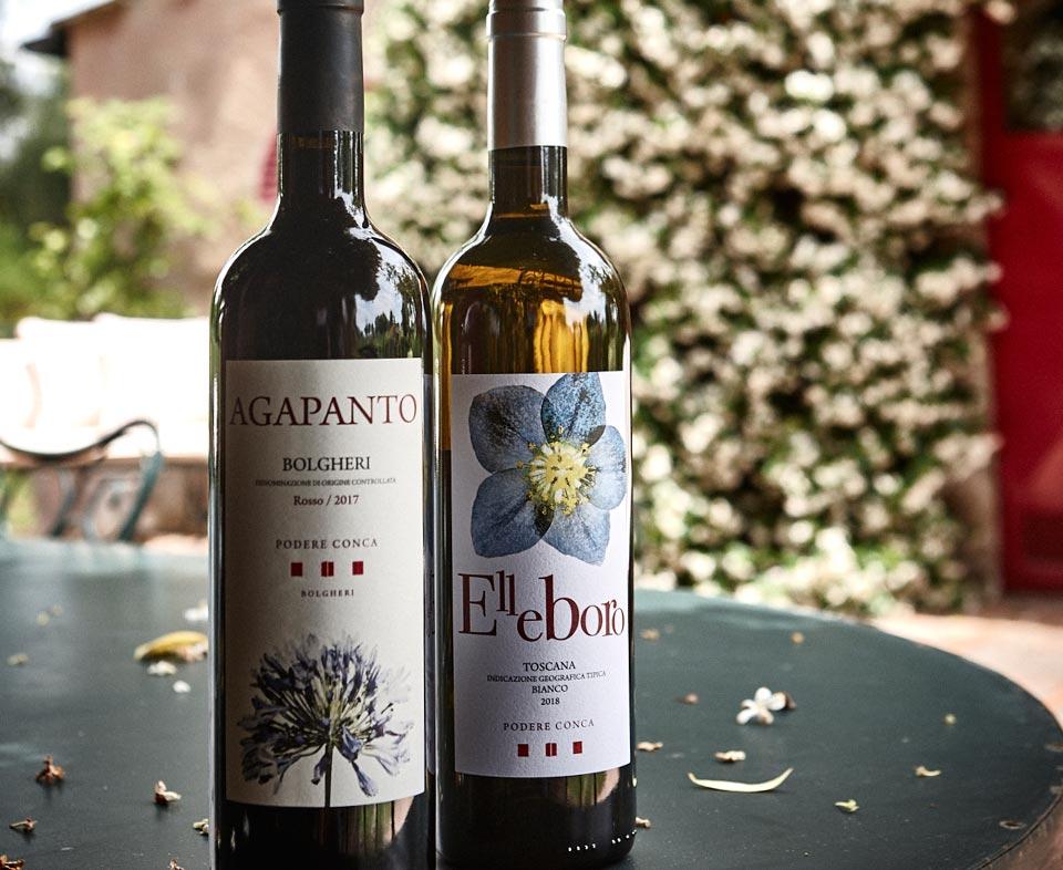 Podere Conca Bolgheri bottiglie Elleboro e Agapanto