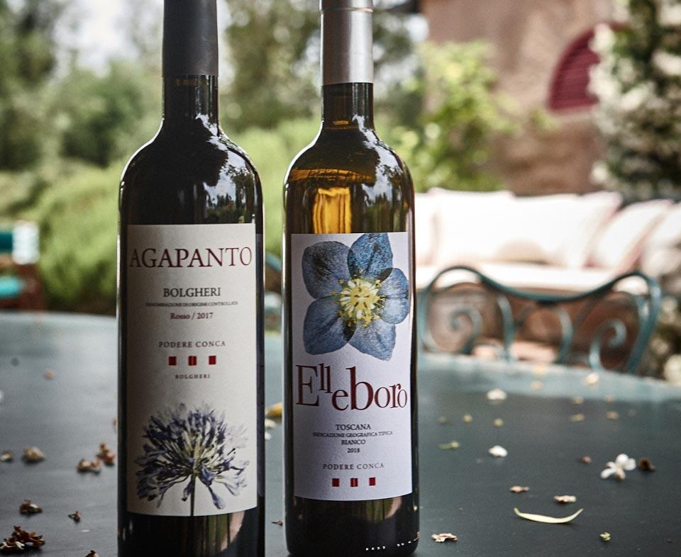 Podere Conca Bolgheri bottiglie Agapanto ed Elleboro