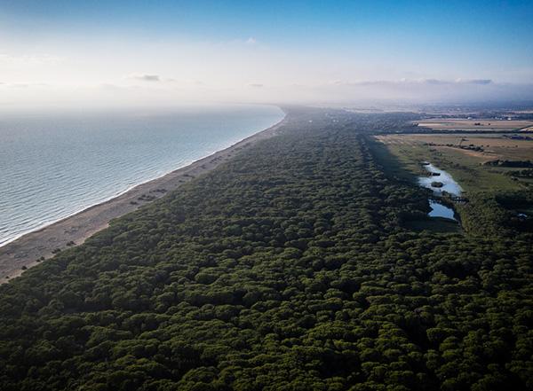 Podere Conca Bolgheri costa e mare