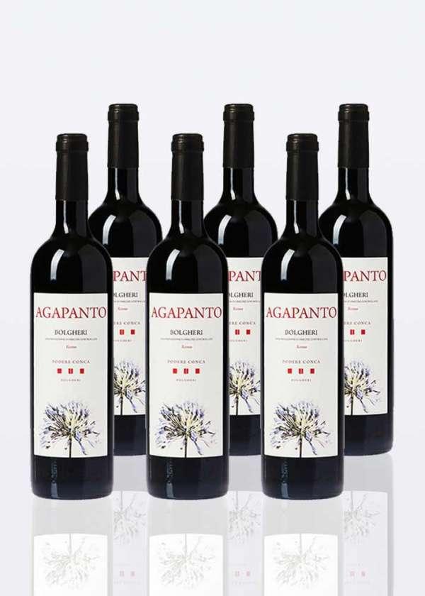 6 bottiglie di vino Bolgheri rosso DOC Agapanto