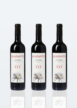 3 bottiglie di Vino Rosso Bolgheri DOC Agapanto lt 0,75