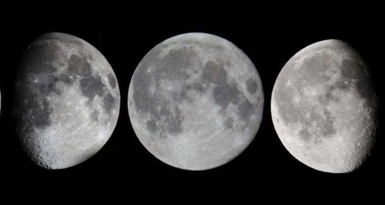 Élagage hivernale : avec lune décroissante ou lune croissante ?