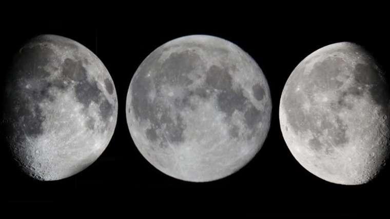 Der Winterschnitt: mit abnehmendem Mond oder mit zunehmendem Mond?