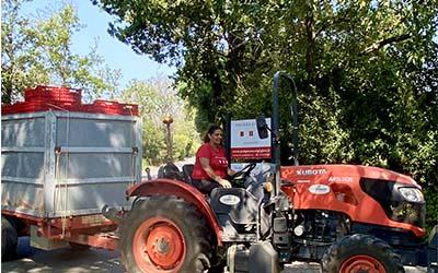 Bolgheri vino 2020 trattore per trasporto uva