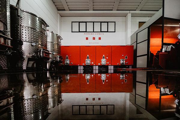 Bolgheri Wine Tasting Wine Cellar