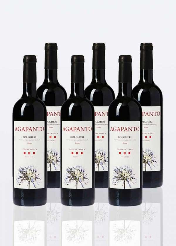 6 bouteilles de Vin Rouge Bolgheri DOC Agapanto
