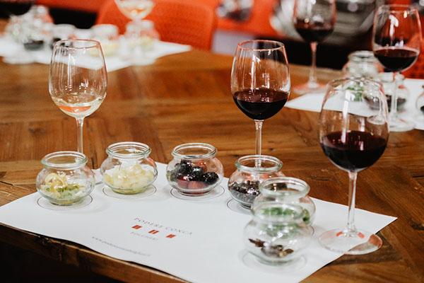 Bolgheri Weinproben sensorischer Weinverkostung