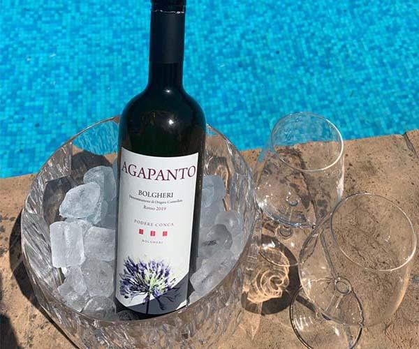 Vino rosso rinfrescato nel ghiaccio