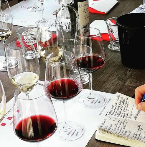Podere-Conca-Bolgheri-degustazioni-DOC-Bolgheri-selezione-vini